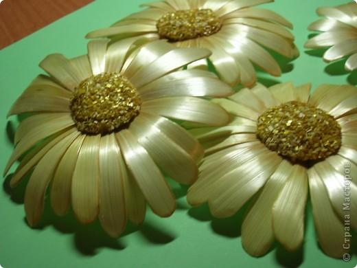 Делая ромашки для подарка к 8 марта решила показать вам поэтапно как делаются самые простые цветы из соломки с приданием полуобъема. МК для начинающих, кто еще не умеет работать с соломкой, поэтому все подробно. . Фото 16
