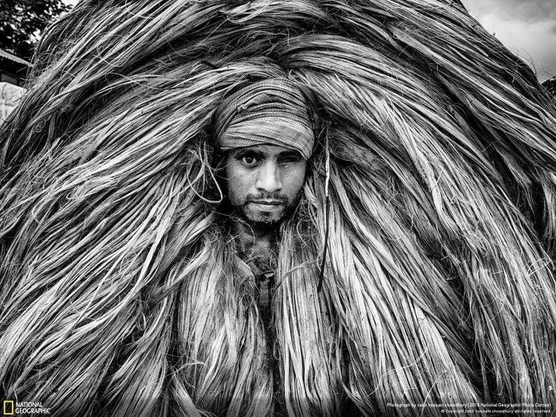Рабочий на джутовой плантации, Закир Хуссейн Чудхари national geographic, конкурс, красота, природа, удивительно, фото, фотография, фотоподборка