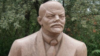 В Биробиджане коммунист обезглавил памятник Ленину