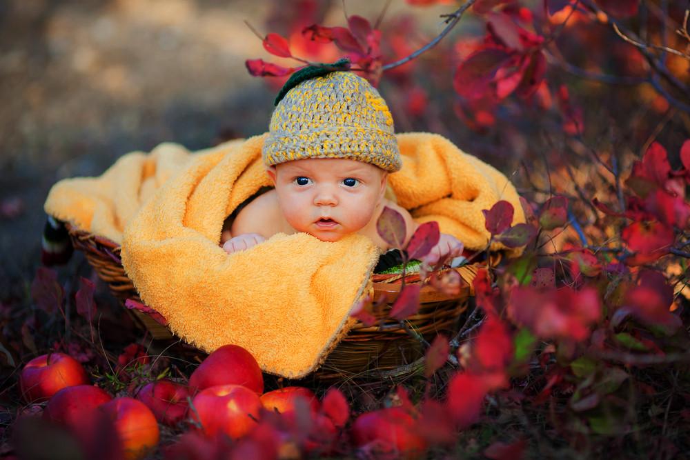 Младенец с доставкой – честн…