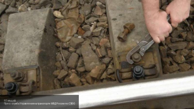 В Великом Новгороде на исправительные работы отправили неудачливых похитителей железной дороги