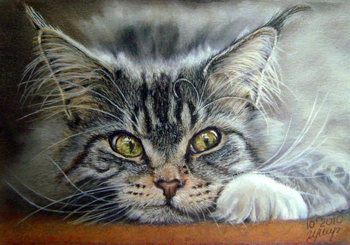 Что за прелесть мой Мурлыка! Акварельные кошки