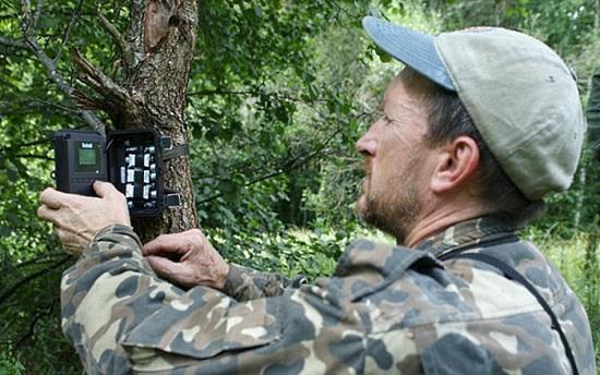 Он установил фотоловушки возле Чернобыля. Камера зафиксировала невероятное! (ФОТО)