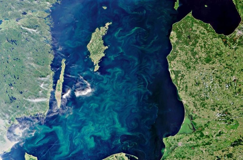 3. Летняя Балтика. Сине-зеленые водоросли видны на поверхности моря. земля, космос, пейзаж, планета, природа, россия, фотосъемка