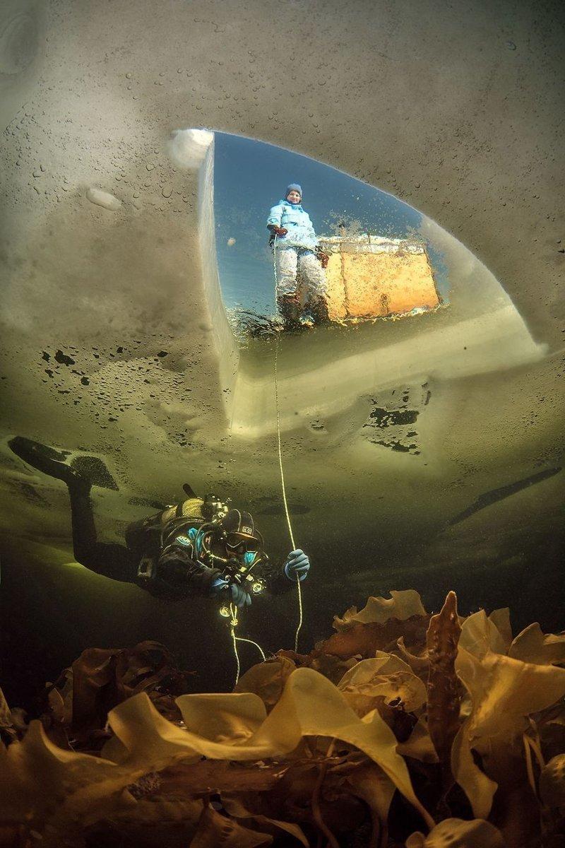 """""""Подо льдом"""", Виктор Лягушкин national geographic, конкурс, красота, природа, удивительно, фото, фотография, фотоподборка"""