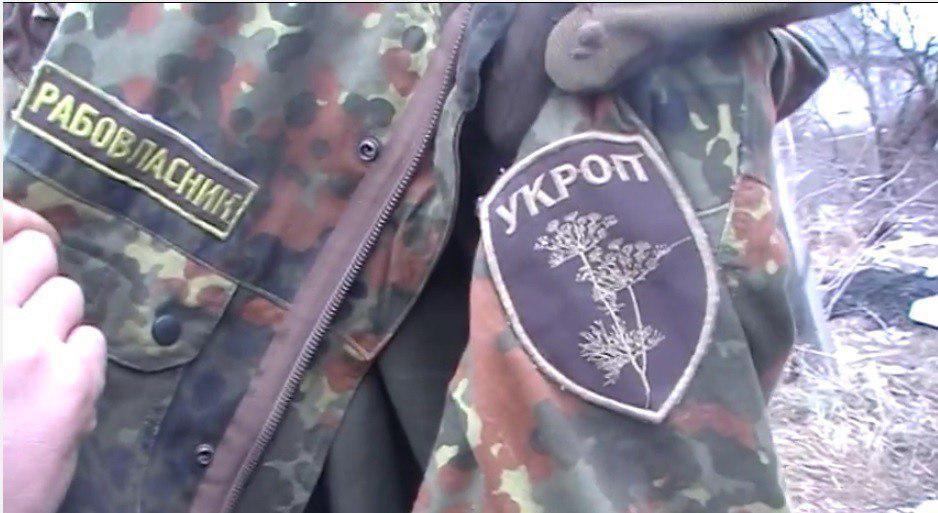 Галичане позорно бежали из Донбасса