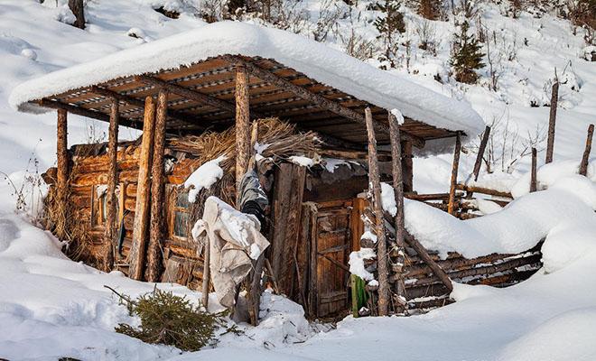 В 1937 году советская семья ушла в тайгу и следующие 30 лет жила без связи с миром