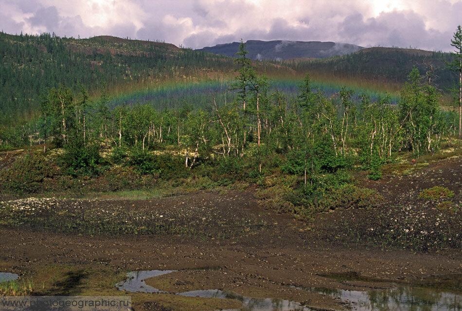 5. Радуга обычно образуется где-то в небе. Эта же заблудилась, затерялась в деревьях на склоне горы.