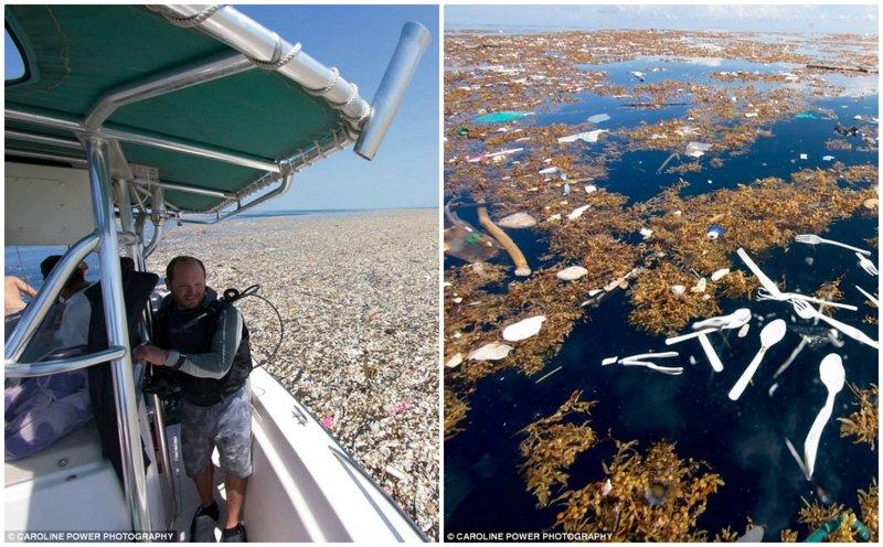 """В Карибском море обнаружили """"остров"""" из пластиковых отходов"""