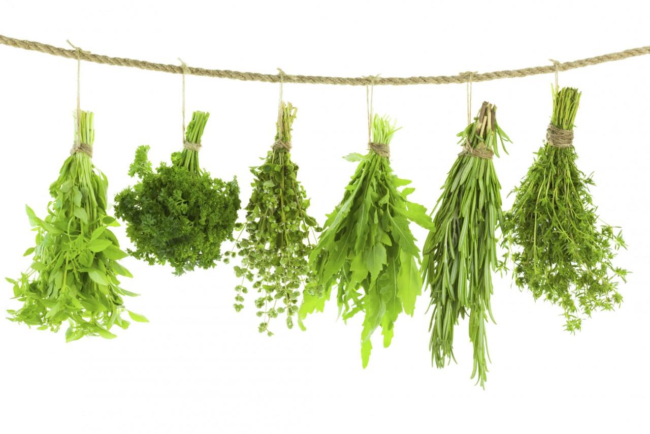 2. Высушить травы идея, микроволновка