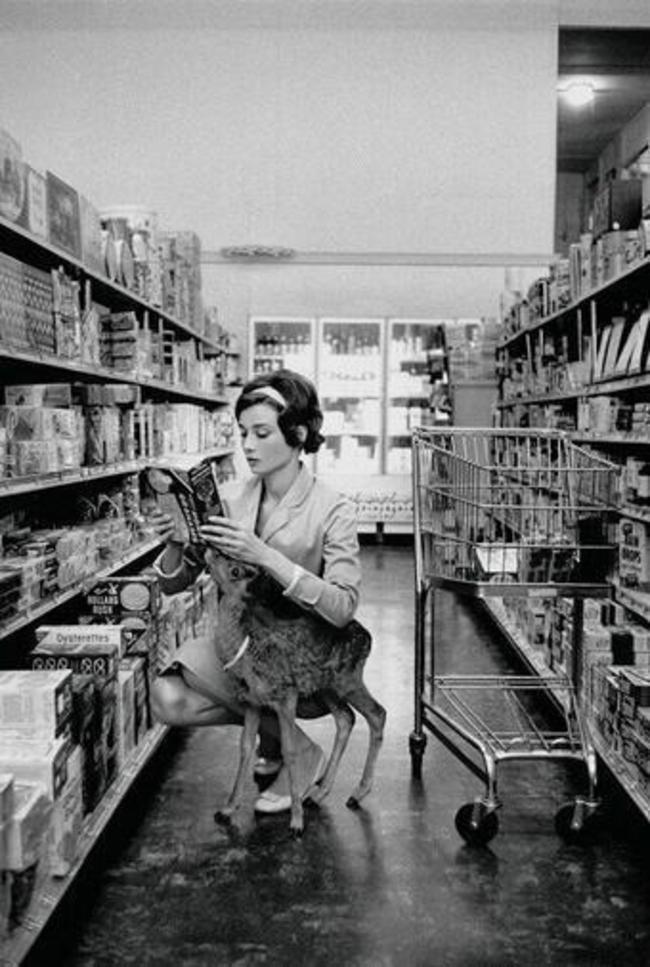 Одри Хепберн гуляет по магазинам с ее домашним олененком в Беверли-Хиллз, 1958 год