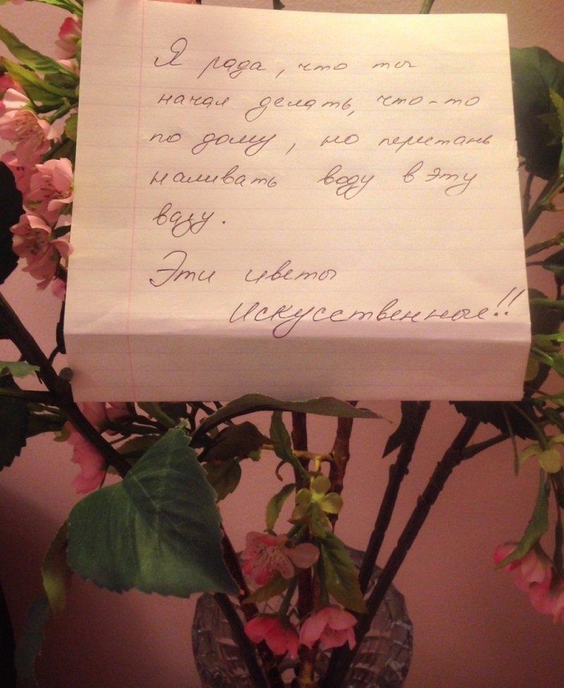 Что написать девушке которая нравится в открытке с цветами, коты картинки