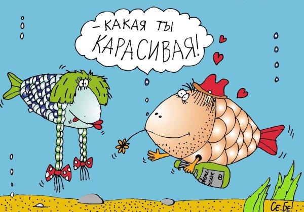 Рыбка моя смешные картинки, кожаной свадьбой открытка