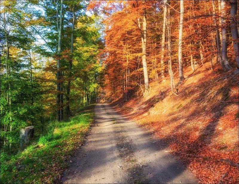 10. Осень: загрузка 50%. планета земля, удивительные фотографии, человек