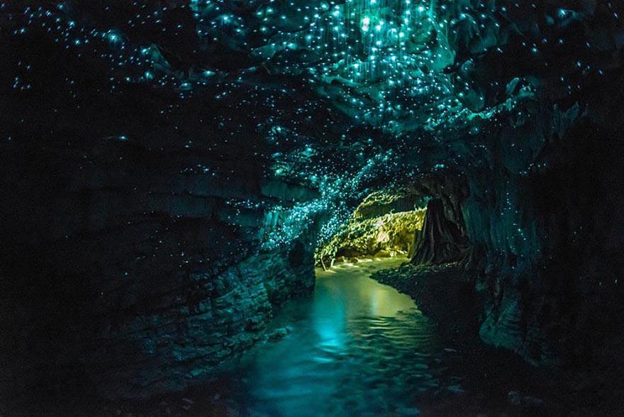 4. Пещера светлячков, Новая Зеландия земля, красота, планета, природа