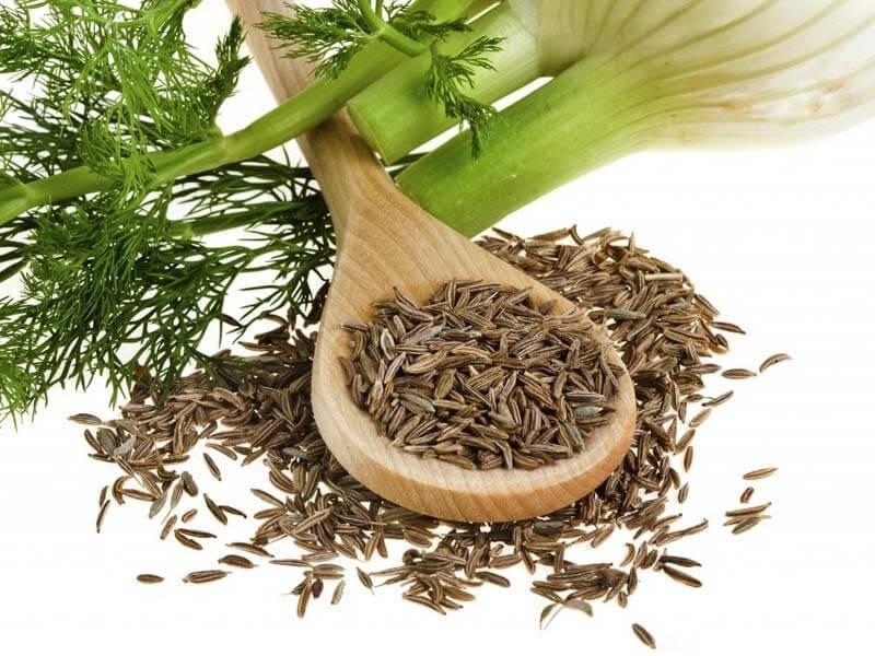Семена укропа на страже вашего здоровья с самого рождения!