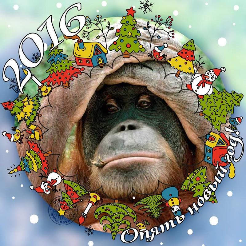 Прикольное поздравление к году обезьяны