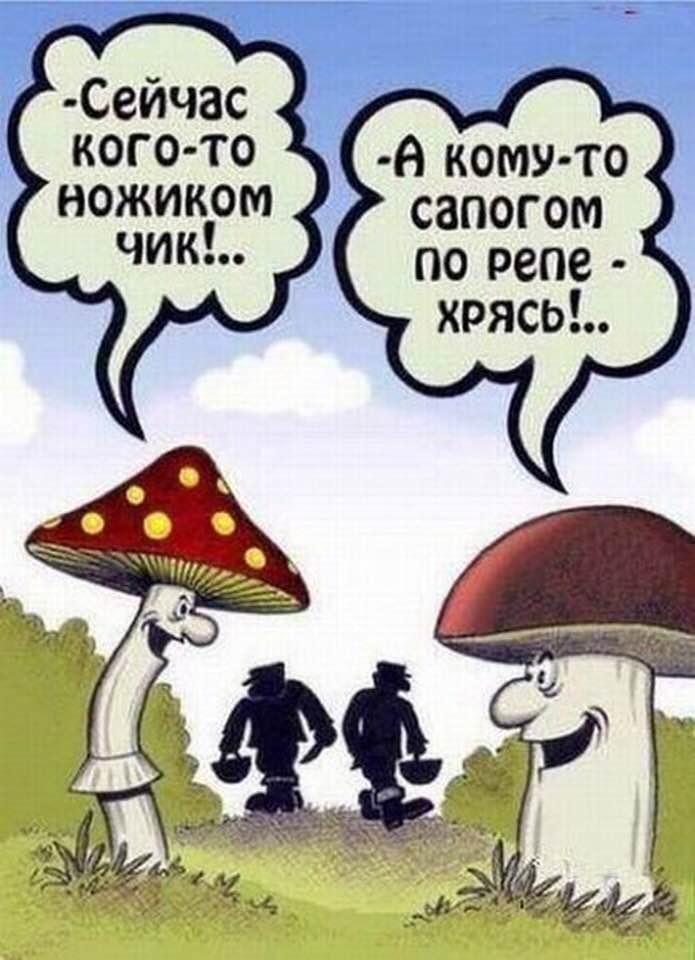 - Дорогой, почему ты отодвигаешь тарелку и ничего не ешь?... бой нурмагомедова и макгрегора