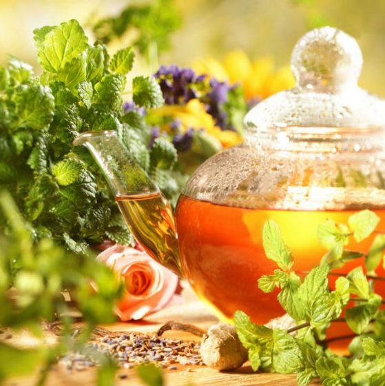 30 чайных трав и растений