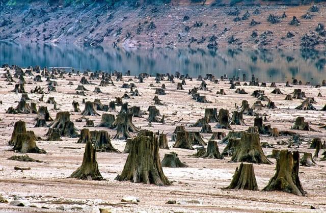 27 фото, которые доказывают, что планета в опасности