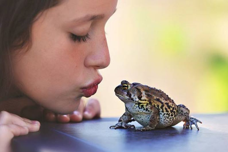 картинки поцеловала жабу его своему дорогому
