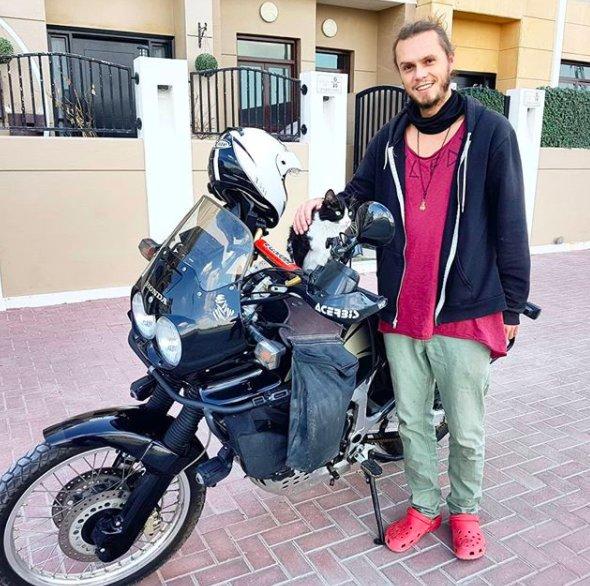 Худая марокканская мурка смо…