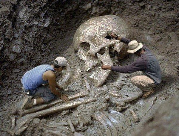 Скелеты уничтожены