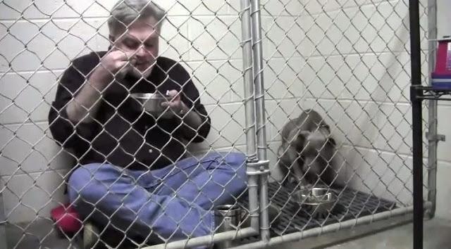 Он зашел в клетку к истощенной собаке и начал есть. Дальше произошло нечто потрясающее