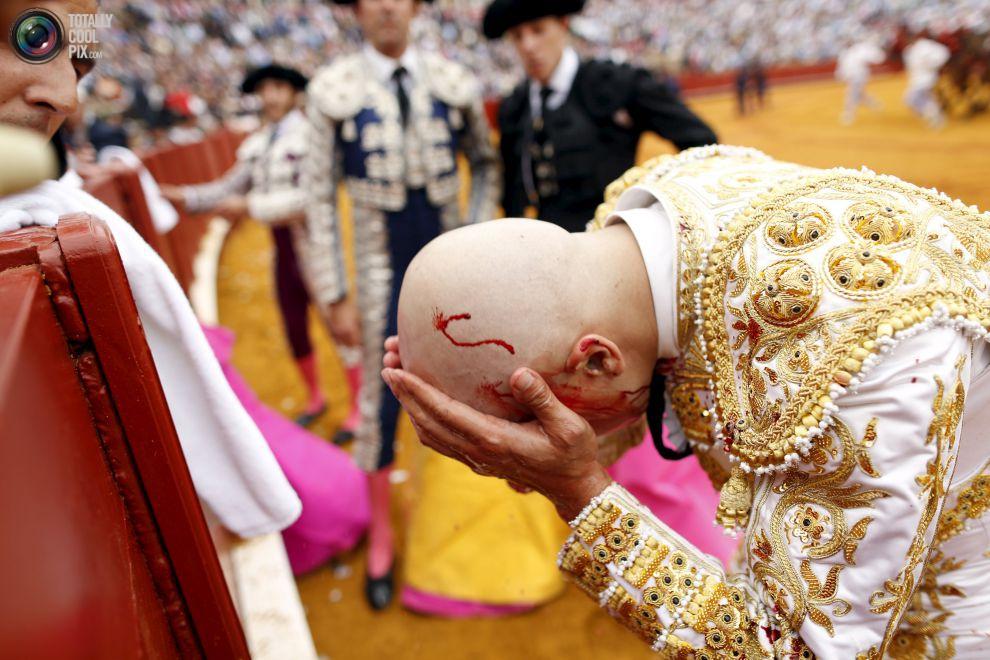 Коррида: умирающее кровавое искусство