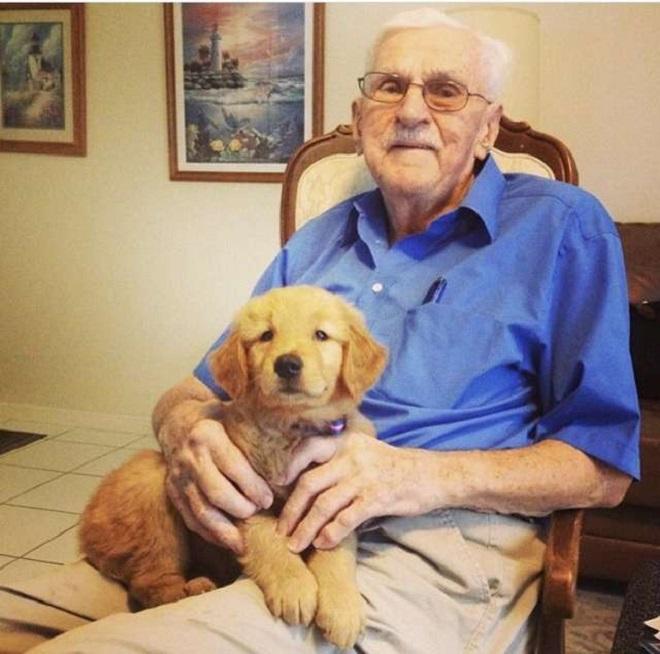 Увидев сходство с экранным персонажем, старичок решил воплотить в жизнь веселую задумку, и в этом ему помог пес