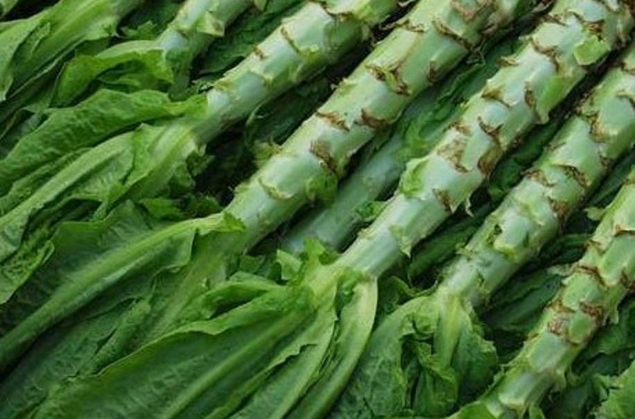 Спаржевый салат уйсун - вырастить можно даже на подоконнике!