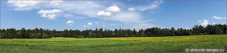 поле Ñреди леÑа