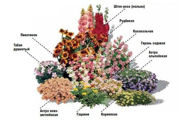 http://mtdata.ru/u23/photo72A0/20752936864-0/original.jpg#20752936864