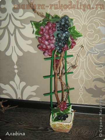Виноградный топик