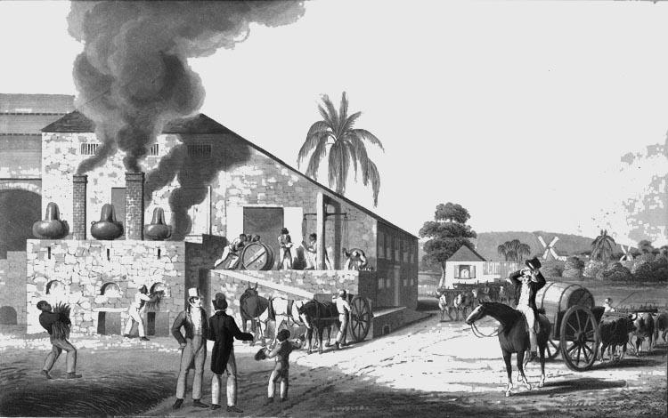 История создания рома и виски