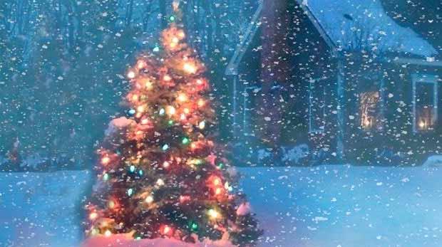 НАША ДАЧА. Украшаем дачный участок на Новый год