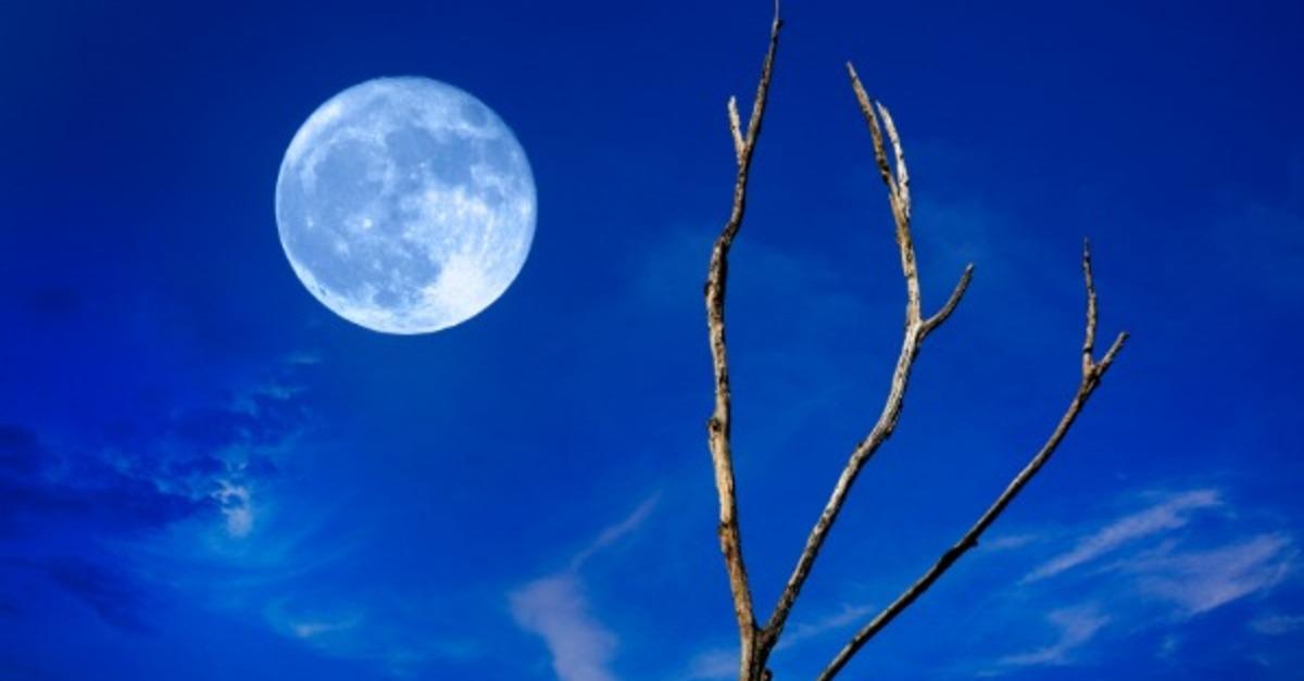 5 удивительных явлений природы