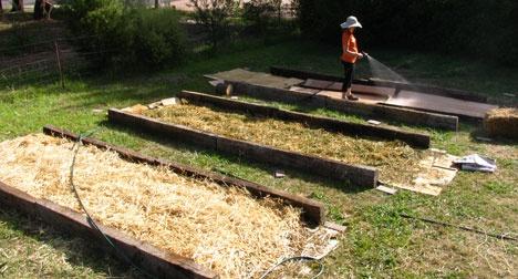 Органическое земледелие, пермакультура: делаем теплые грядки