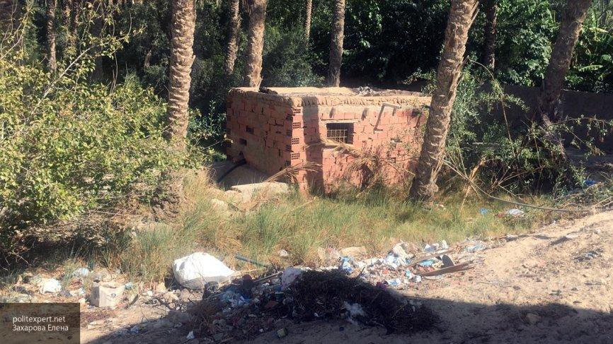 Убийство оппозиционеров в Тунисе: в организации подозревается члены партии Возрождения