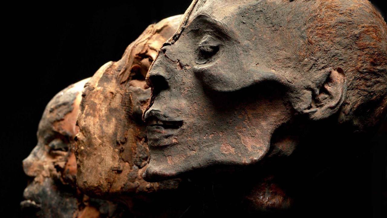 Пять археологических находок, перевернувших историю с ног на голову