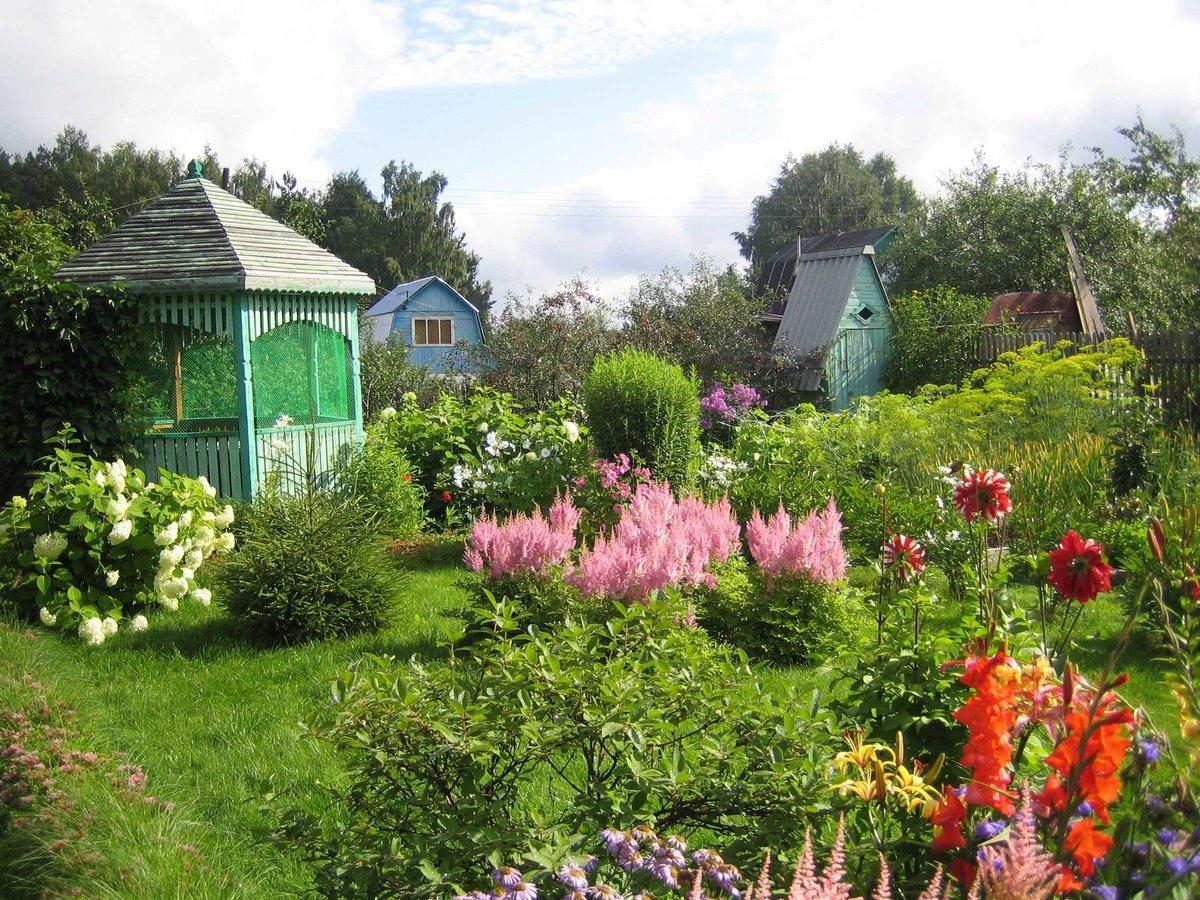 красивые сады дачников подмосковья фото нюанс