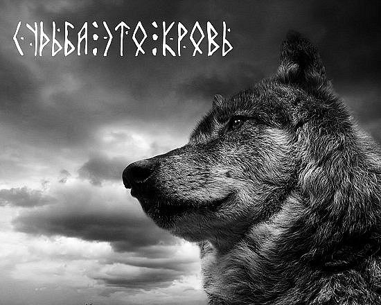 Генетики поставили шах и мат русофобам — Русские – один из самых чистокровных народов в Евразии.