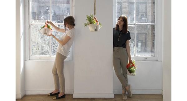 Цветник дома: 8 необычных идей от разных дизайнеров