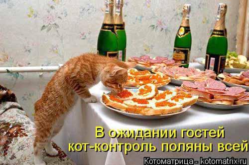 Дегустаторы не дремлют...)) фото для улыбки...