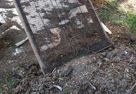 Органическое земледелие, пермакультура: теплые грядки просеваем почву