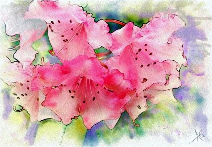 Нежные цветы. Акварели ALBER…