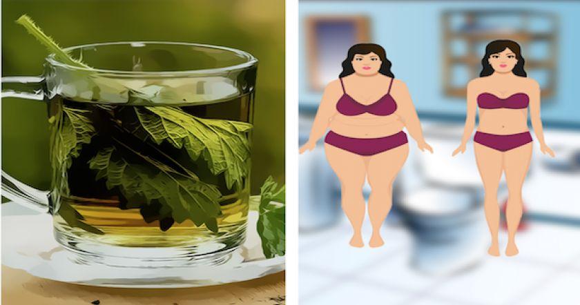 Принимайте эту смесь перед сном и устраните все жиры из вашего организма