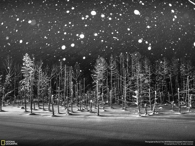 """Снежинки, Рюка И Ито -почетный диплом, категория """"Места"""" national geographic, конкурс, красота, природа, удивительно, фото, фотография, фотоподборка"""
