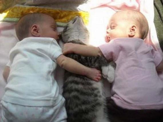Зачем детям кошки?