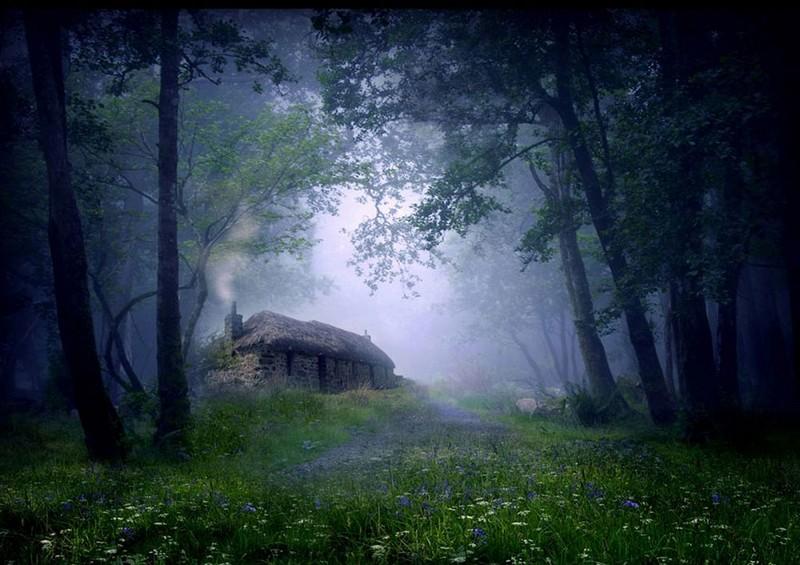 1. Коттедж в лесу. Шотландия.